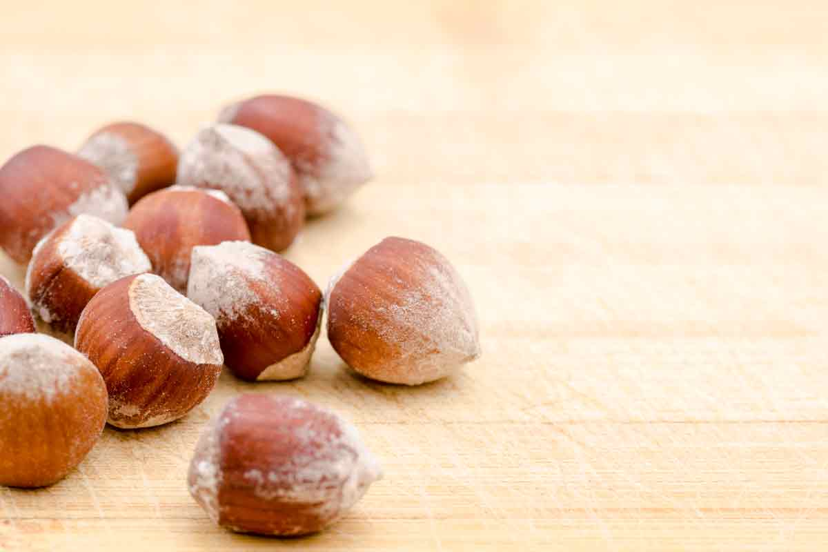 Hazelnut Backgrounds, Compatible - PC, Mobile, Gadgets| 1200x800 px