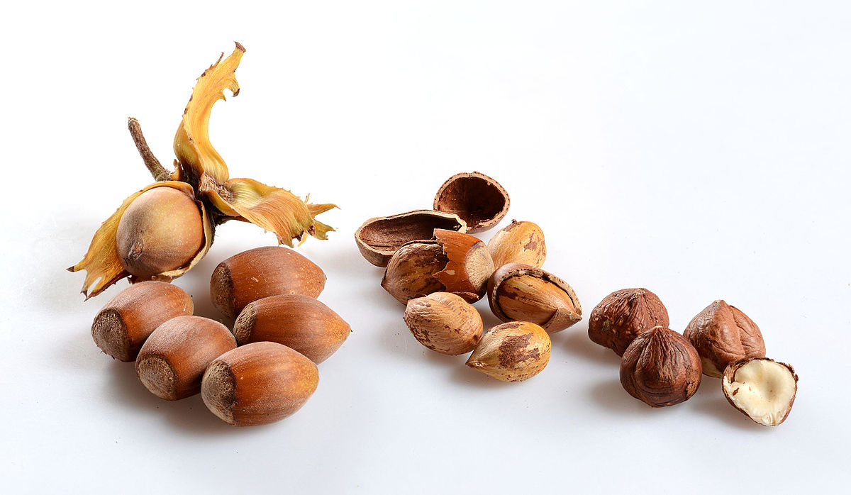 Nice wallpapers Hazelnut 1200x698px