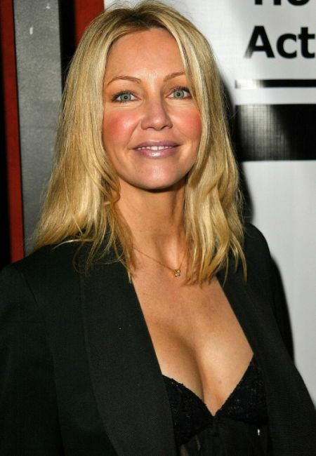 Nice wallpapers Heather Locklear 450x650px