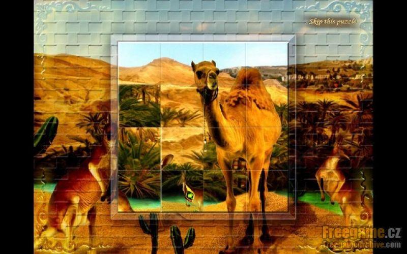 Nice wallpapers Hidden Jewel Adventure  800x500px