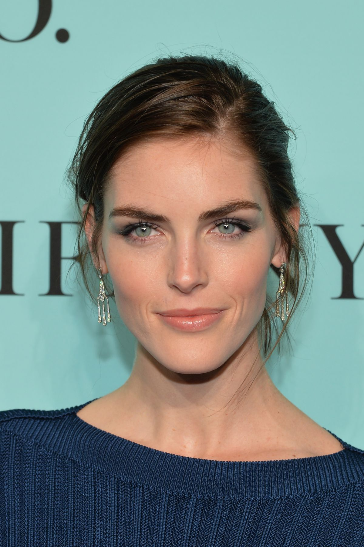 Hilary Rhoda High Quality Background on Wallpapers Vista