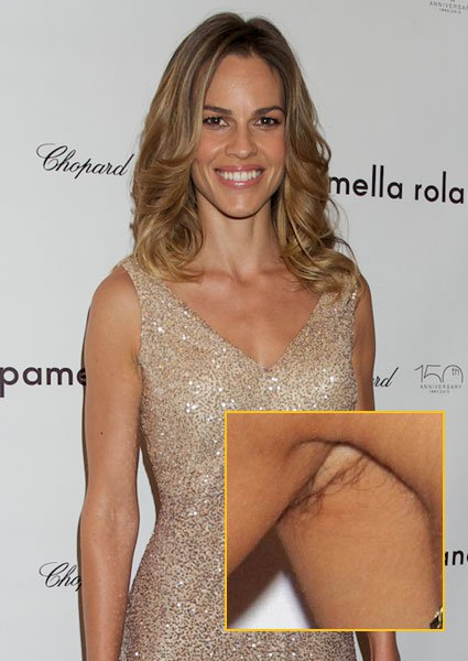 Hilary Swank Pics, Celebrity Collection