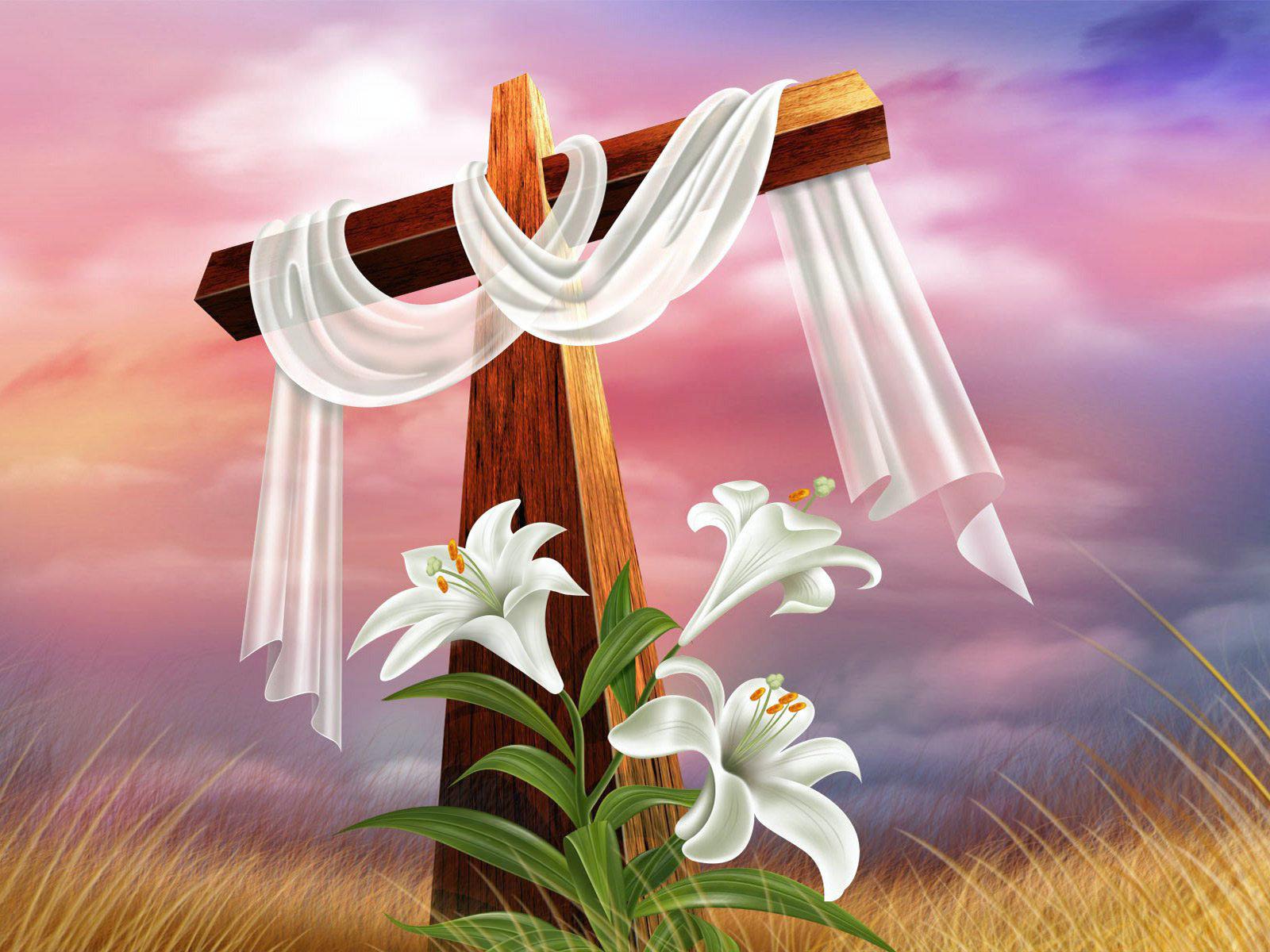 Holy Cross #10