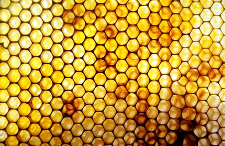 Honeycomb High Quality Background on Wallpapers Vista