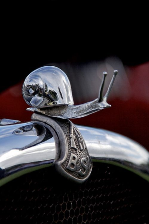 Nice wallpapers Hood Ornament 499x750px