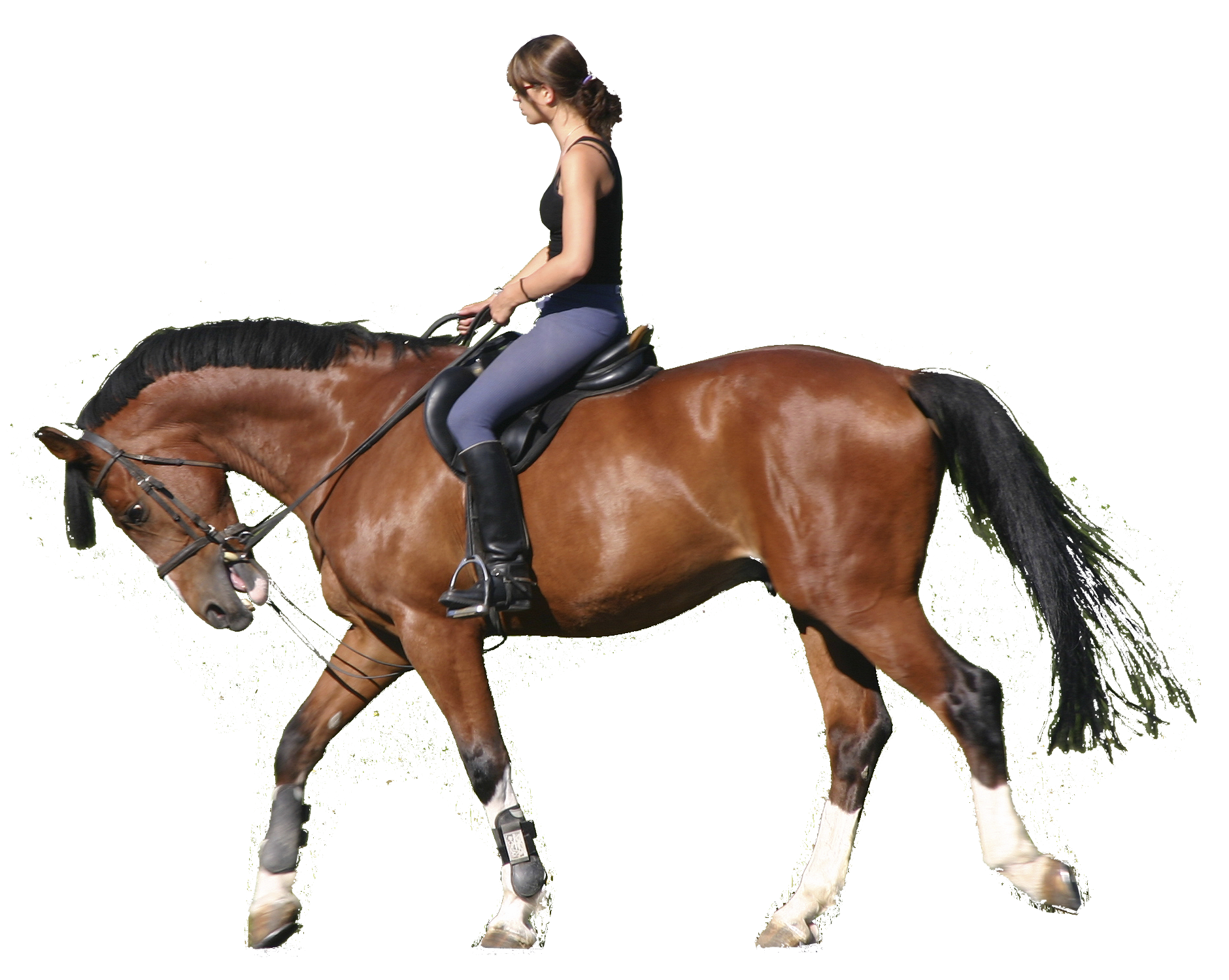 Horse Riding Wallpapers Photography Hq Horse Riding Pictures 4k Wallpapers 2019