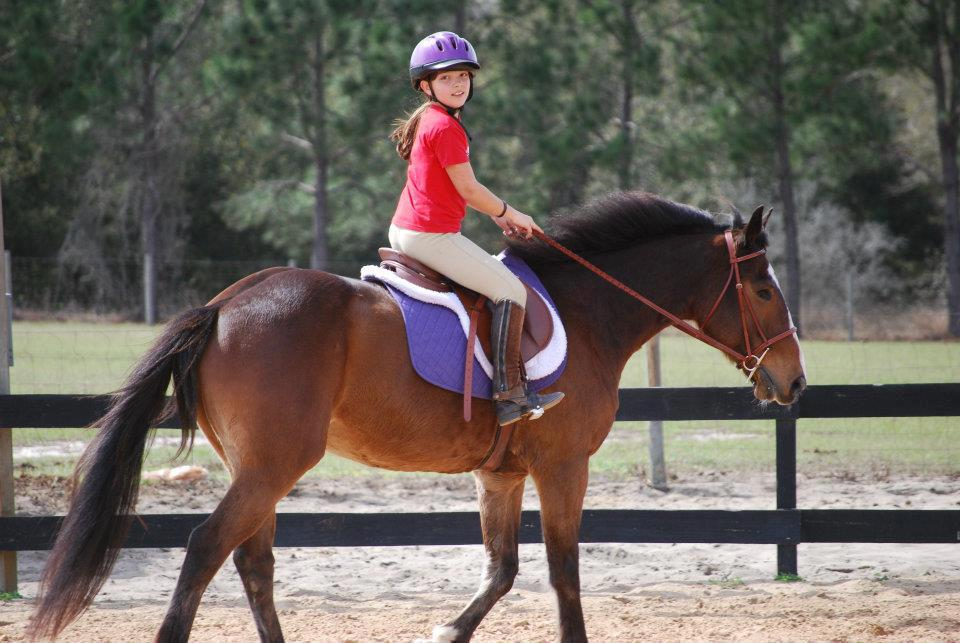 Nice Images Collection: Horse Riding Desktop Wallpapers