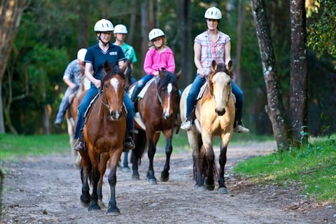 Images of Horse Riding | 480x320