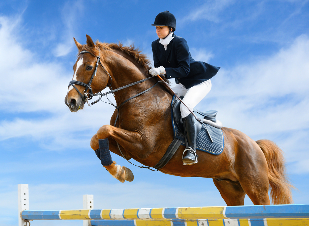 Amazing Horse Riding Pictures & Backgrounds