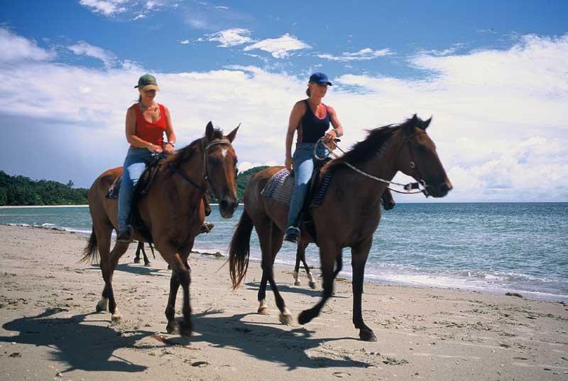 High Resolution Wallpaper | Horse Riding 800x536 px
