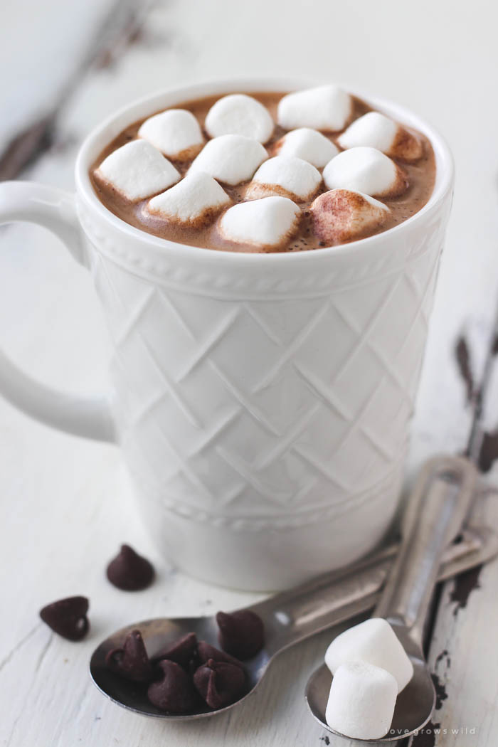 Nice Images Collection: Hot Chocolate Desktop Wallpapers
