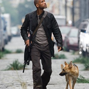 Nice wallpapers I Am Legend 300x300px