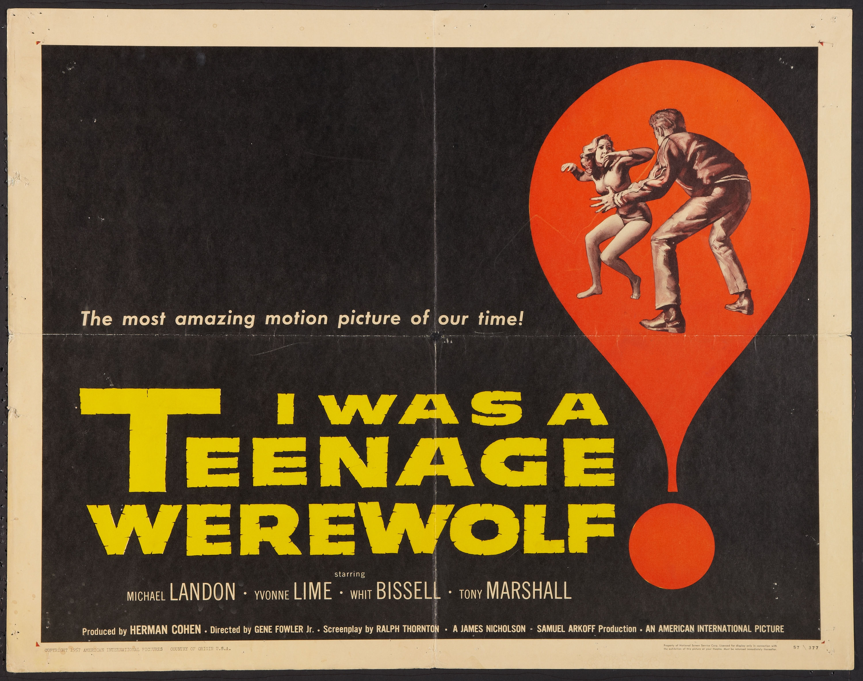 Nice wallpapers I Was A Teenage Werewolf 3000x2369px
