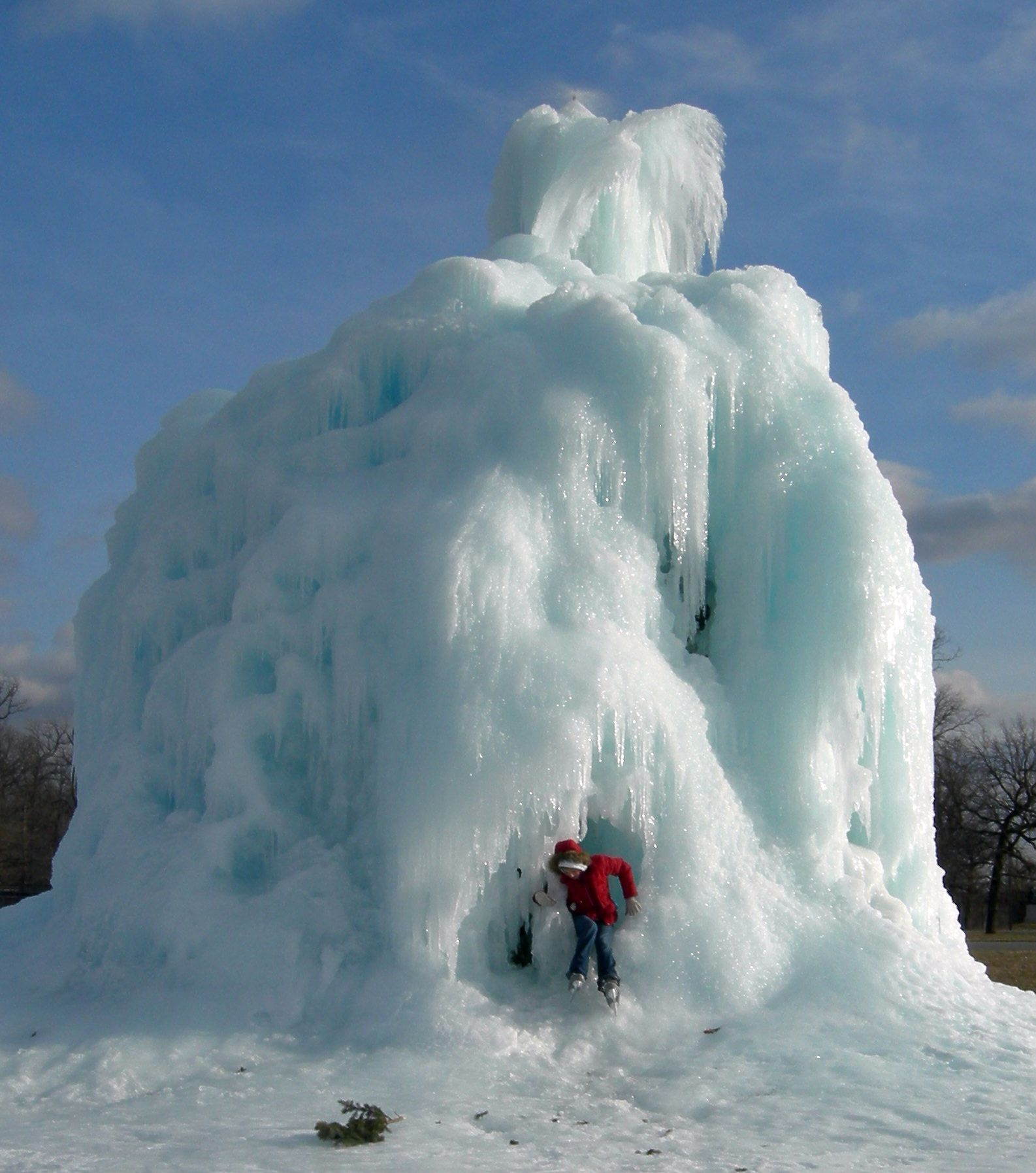 Ice Tree #9