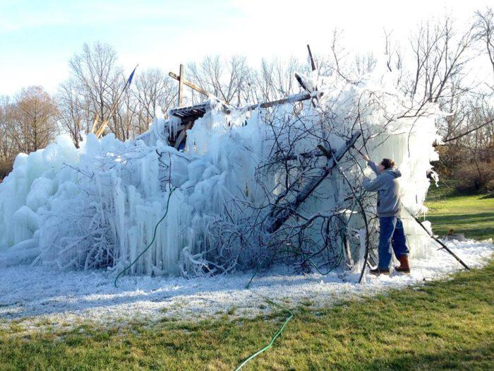 Ice Tree #13