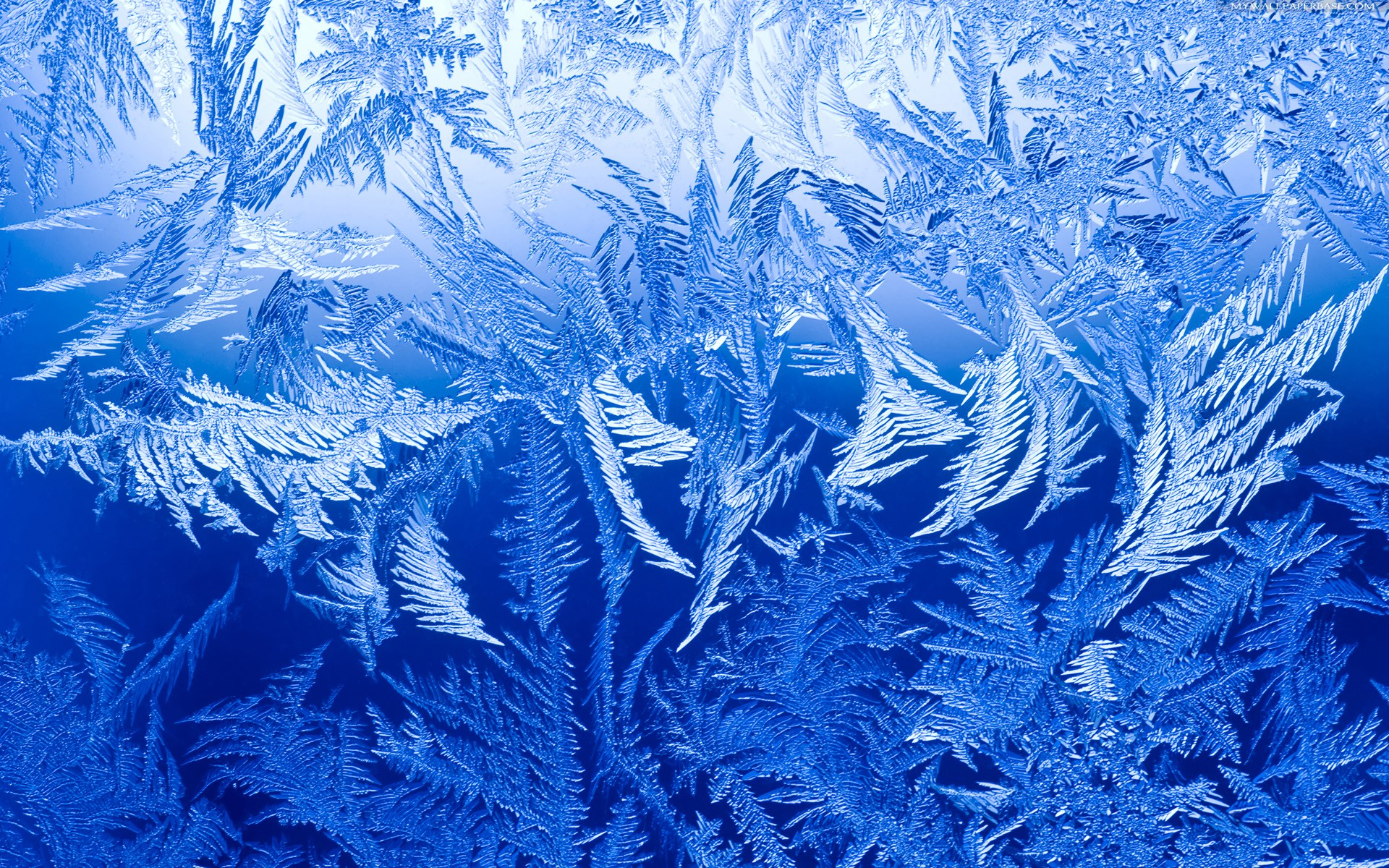 Ice Backgrounds on Wallpapers Vista