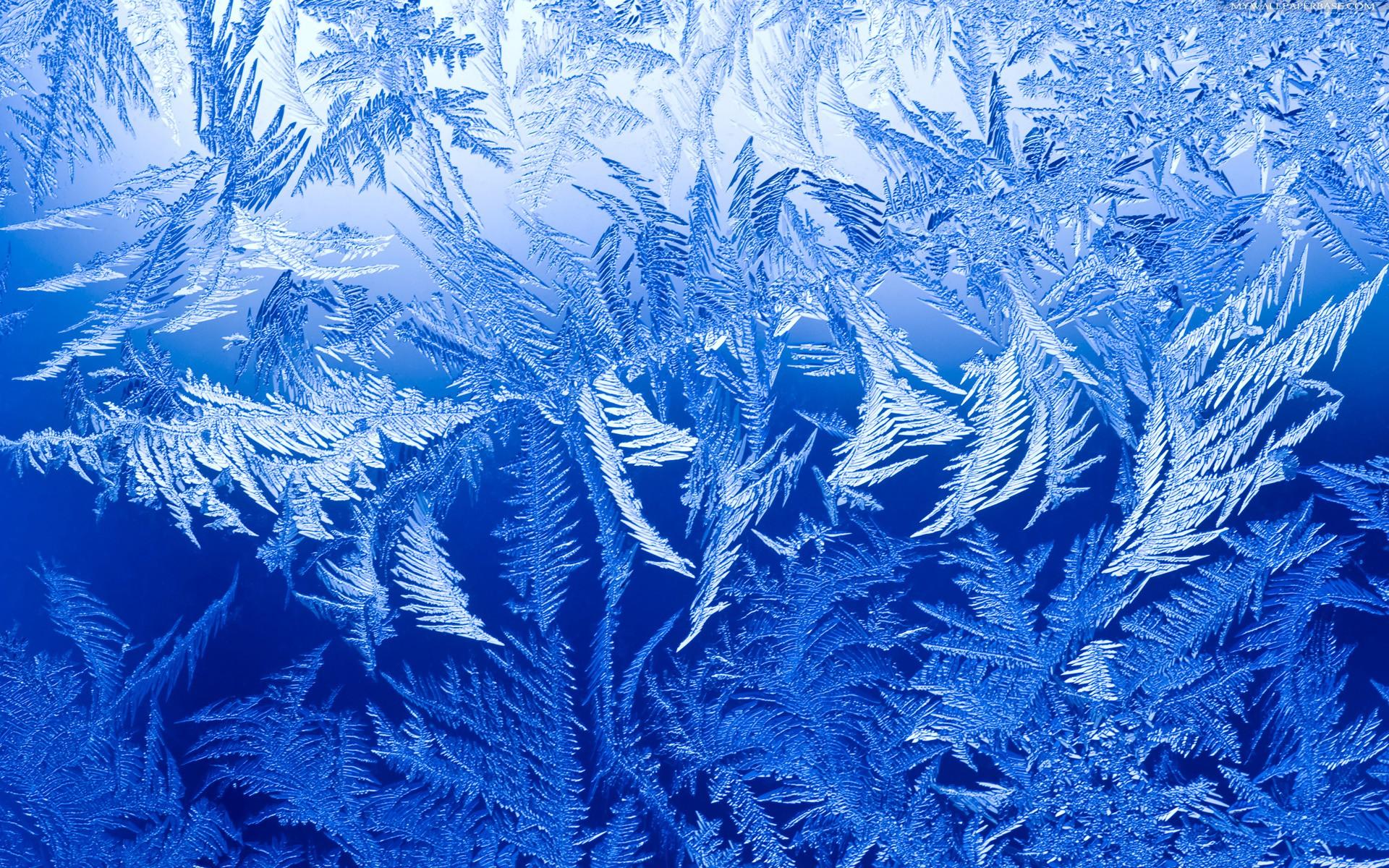 Ice #17