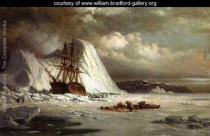 Nice wallpapers Icebound 800x521px