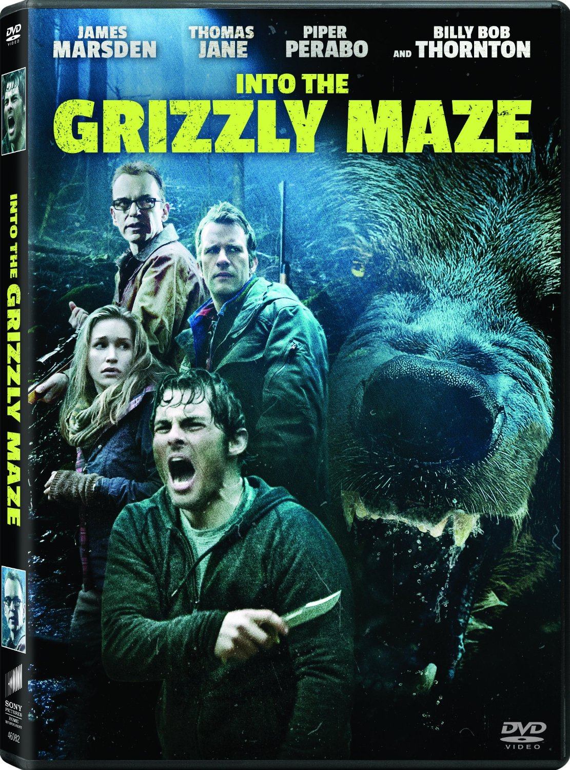 Into The Grizzly Maze Backgrounds, Compatible - PC, Mobile, Gadgets| 1111x1500 px