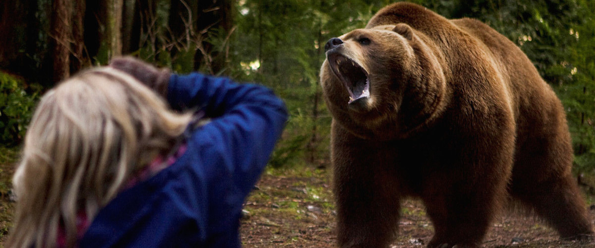 HD Quality Wallpaper | Collection: Movie, 1200x500 Into The Grizzly Maze