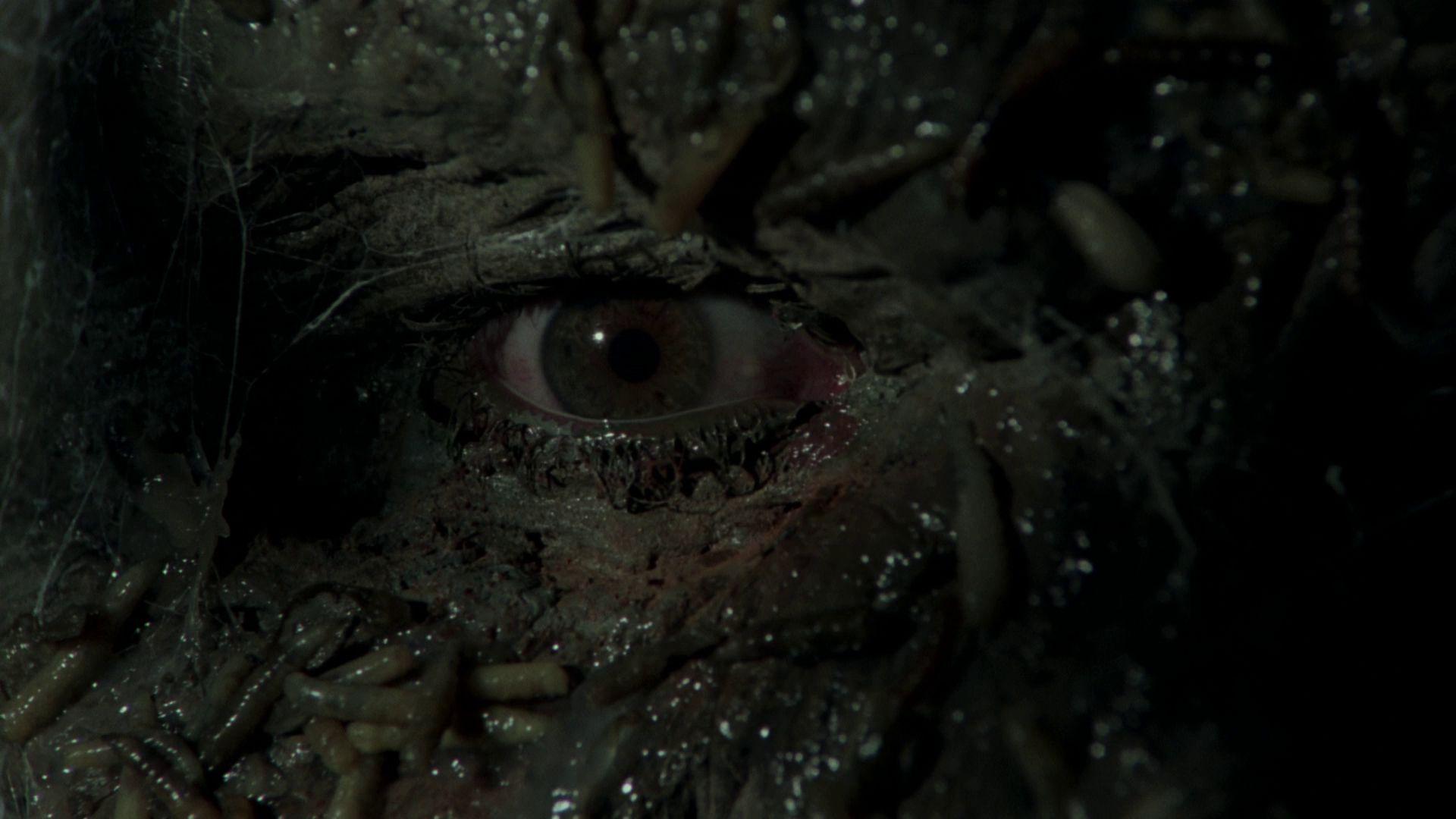 Jason Lives Friday The 13th Part Vi Wallpapers Movie Hq Jason