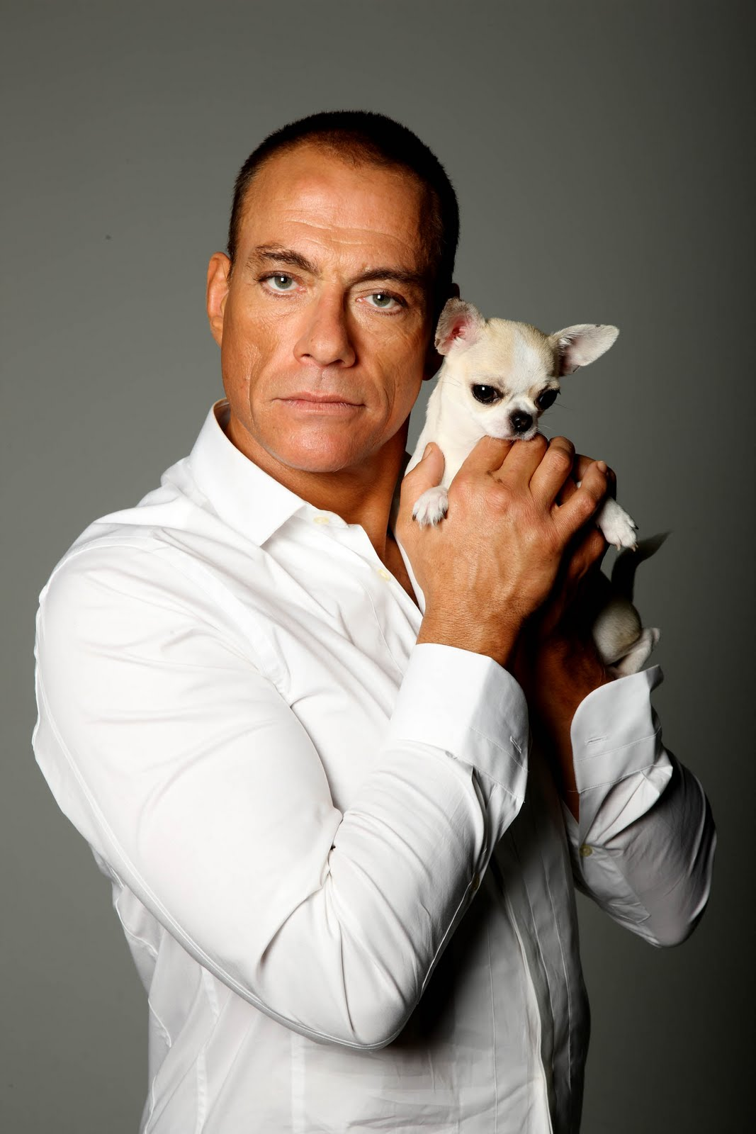Most Viewed Jean Claude Van Damme Wallpapers 4k Wallpapers