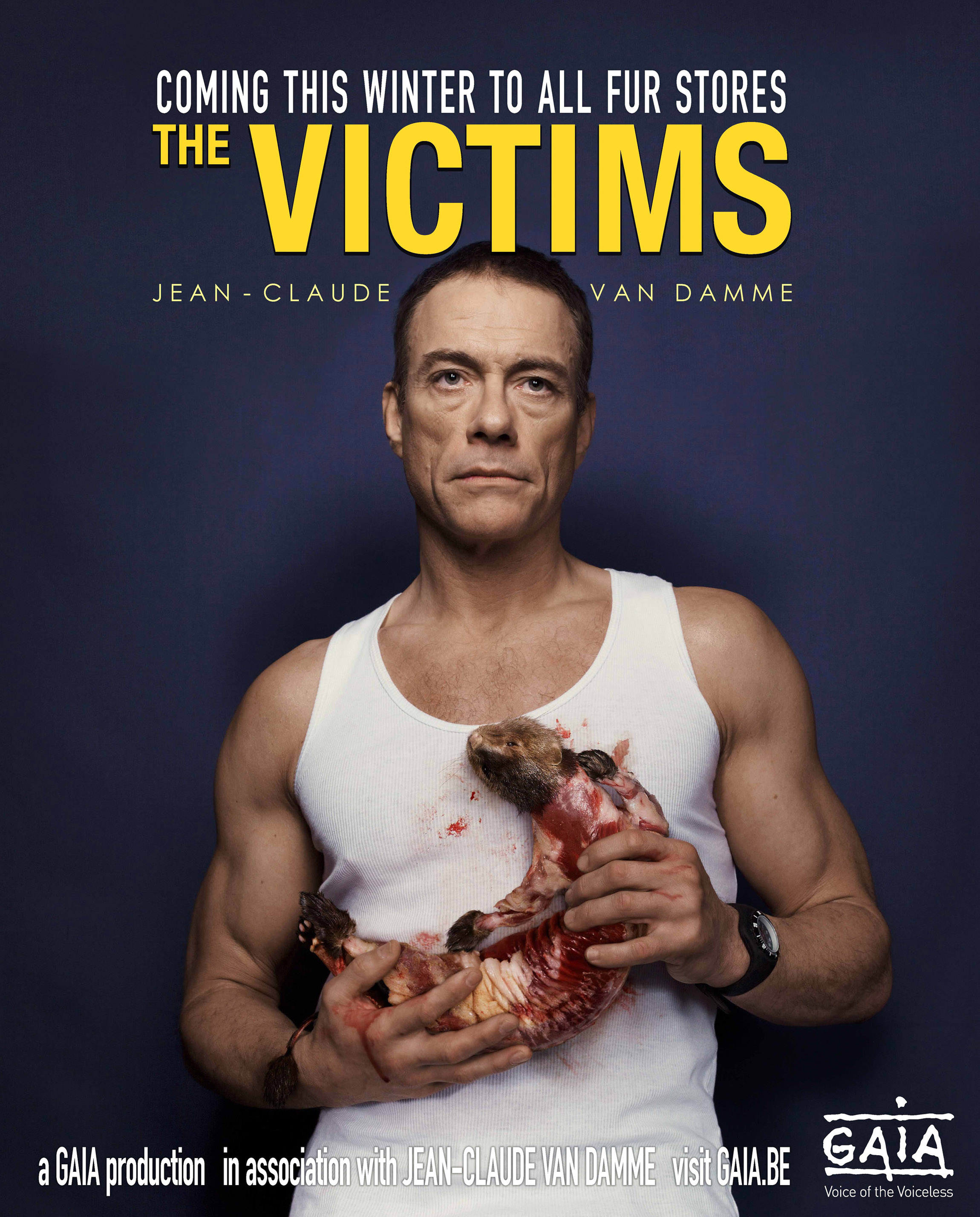 Jean-claude Van Damme Pics, Celebrity Collection