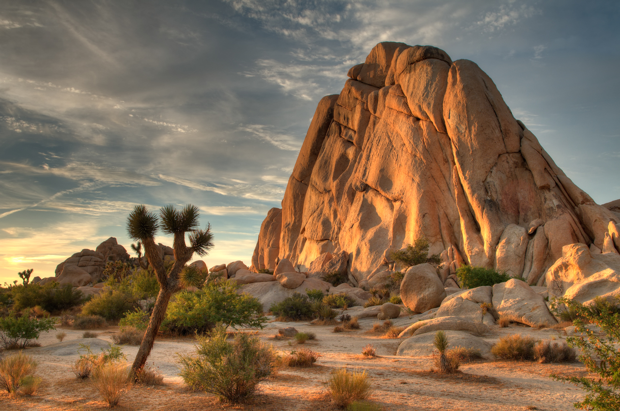 HQ Joshua Tree National Park Wallpapers | File 1074.05Kb