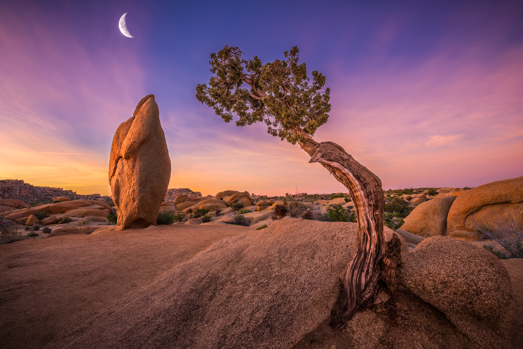 2048x1365 > Joshua Tree National Park Wallpapers
