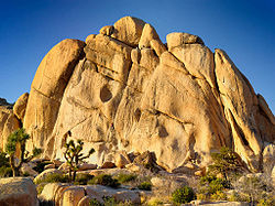 250x187 > Joshua Tree National Park Wallpapers