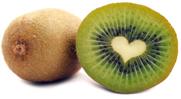 HD Quality Wallpaper | Collection: Animal, 607x331 Kiwi