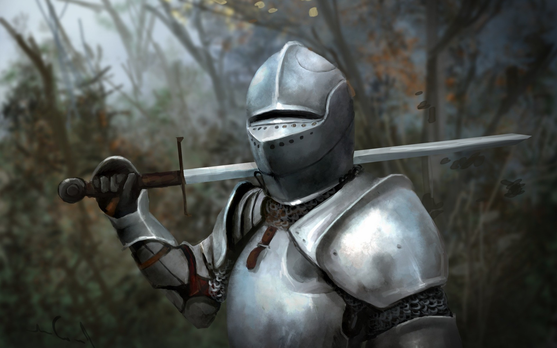 Nice wallpapers Knight 1920x1200px