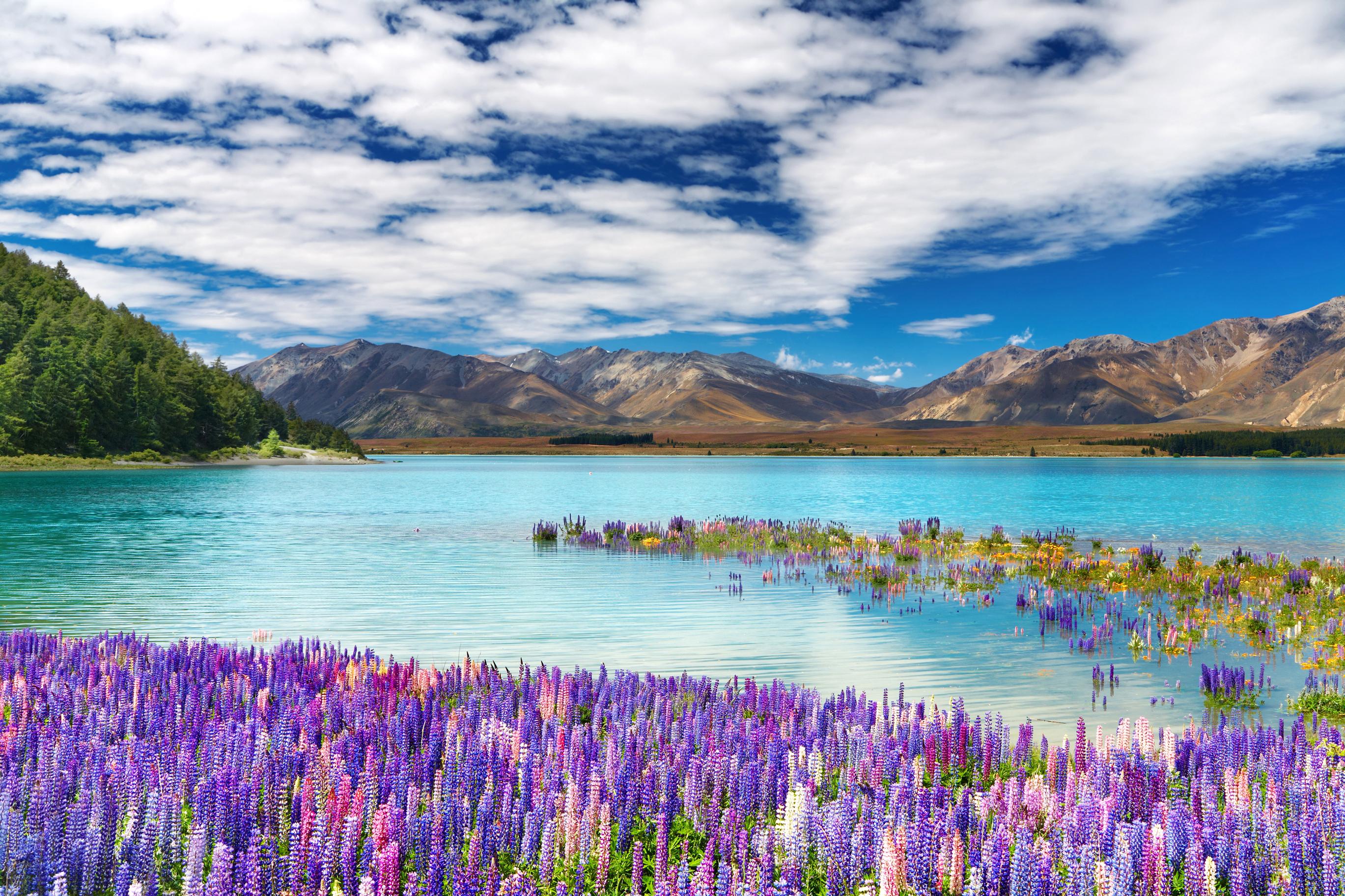 Images of Lake Tekapo | 2738x1825