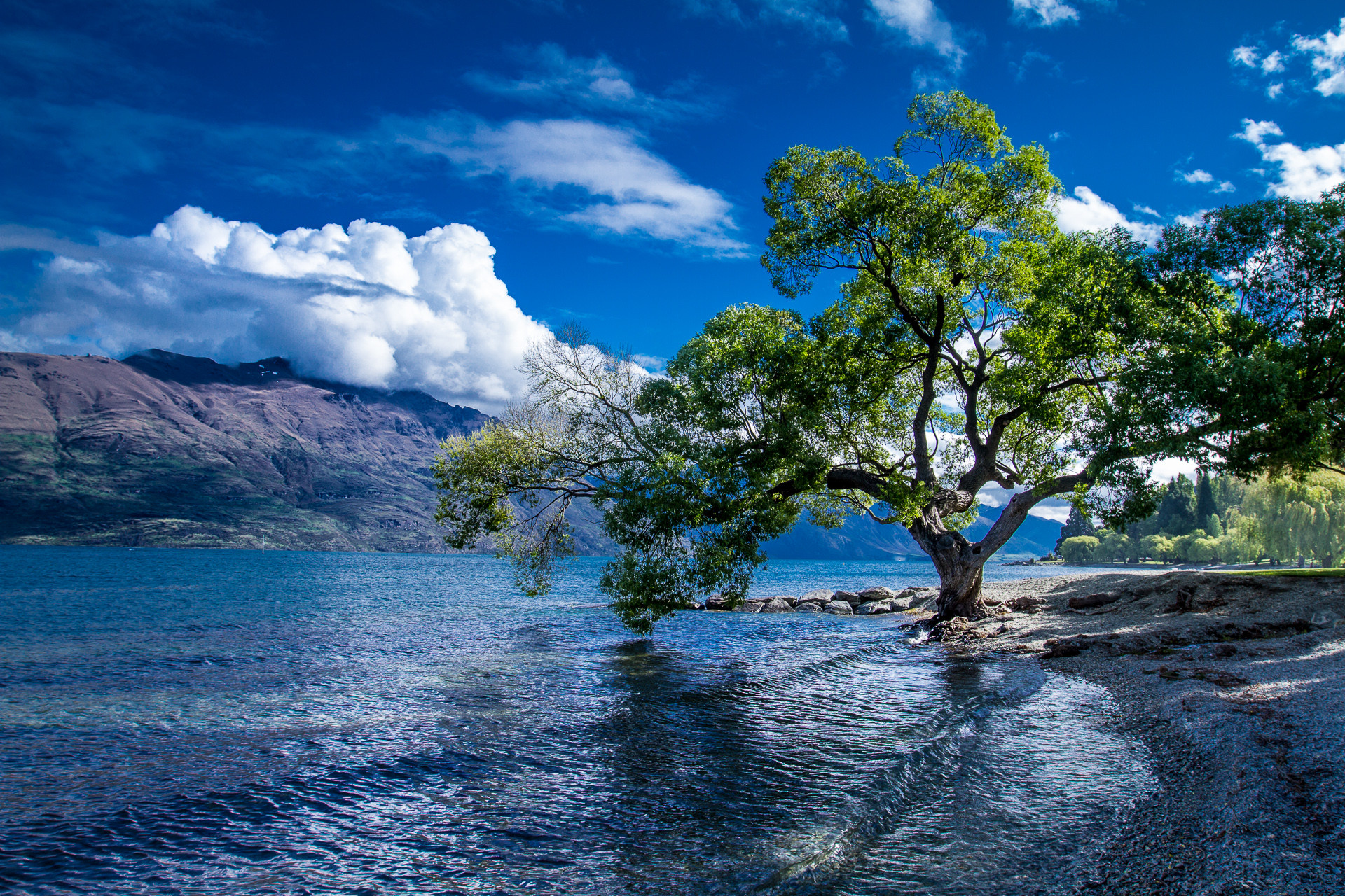 Lake Wakatipu Backgrounds on Wallpapers Vista