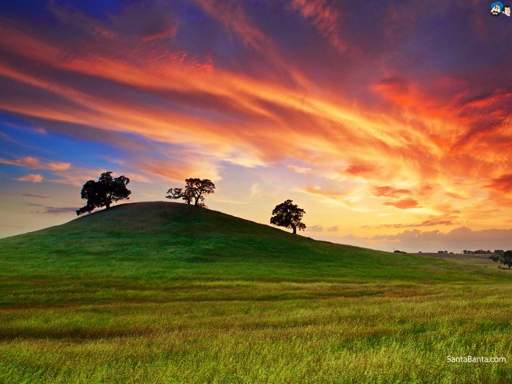 High Resolution Wallpaper | Landscape 1024x768 px