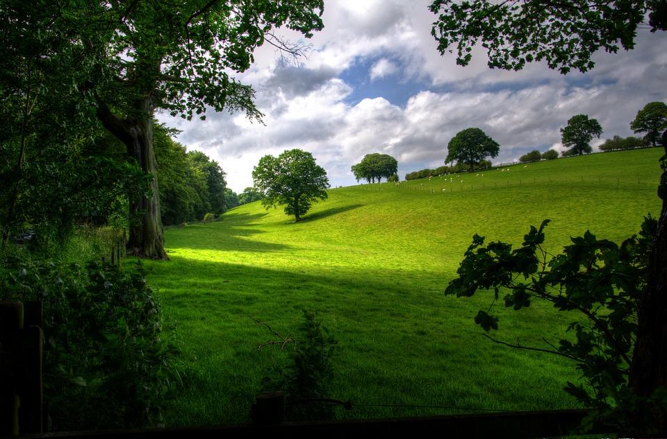 High Resolution Wallpaper | Landscape 960x633 px