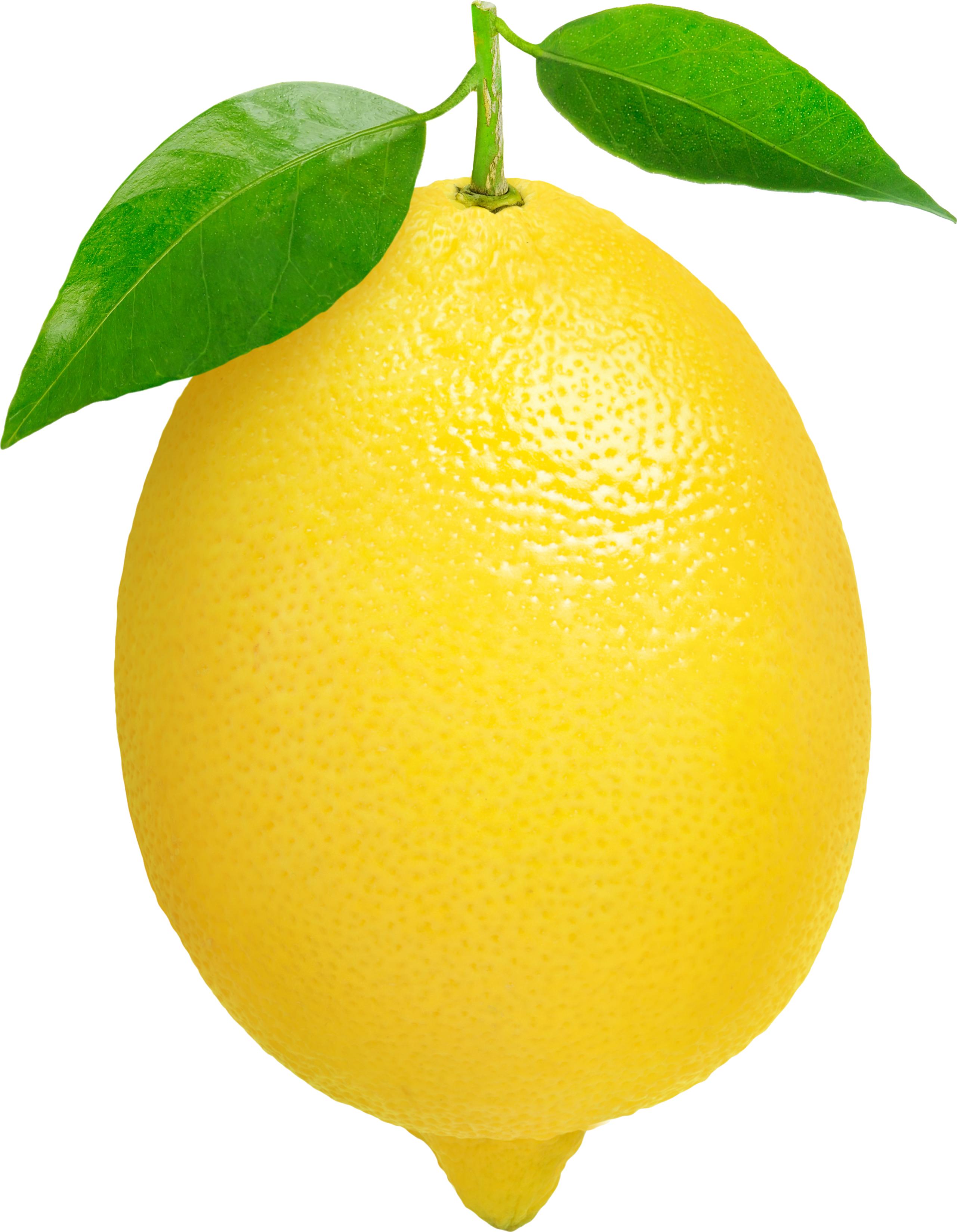 Lemon #10
