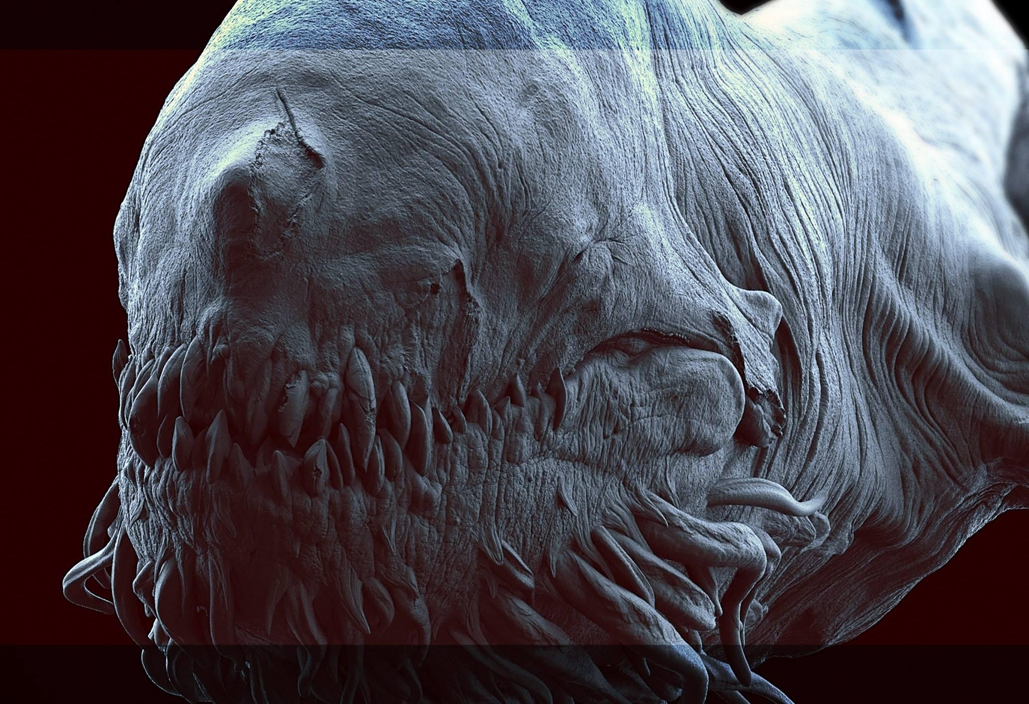 High Resolution Wallpaper | Leviathan 2048x1403 px