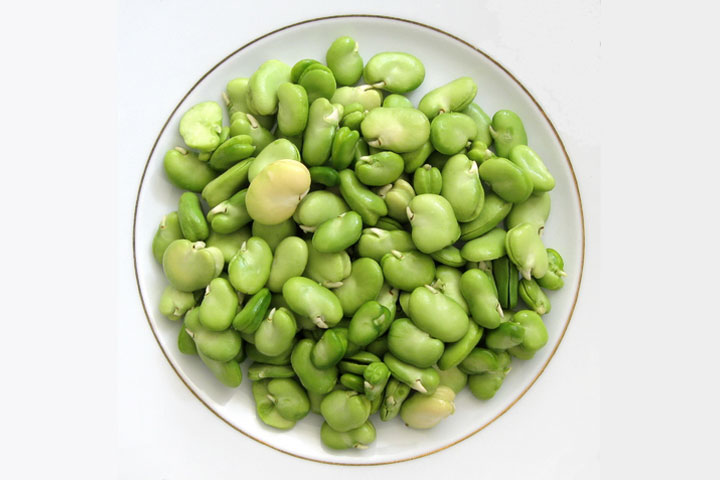 Lima Beans Backgrounds on Wallpapers Vista