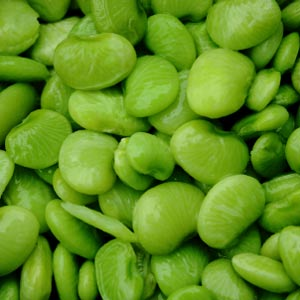 Lima Beans Pics, Food Collection