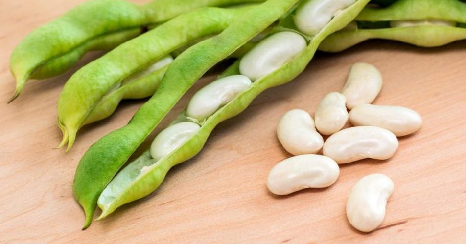 HD Quality Wallpaper | Collection: Food, 952x500 Lima Beans