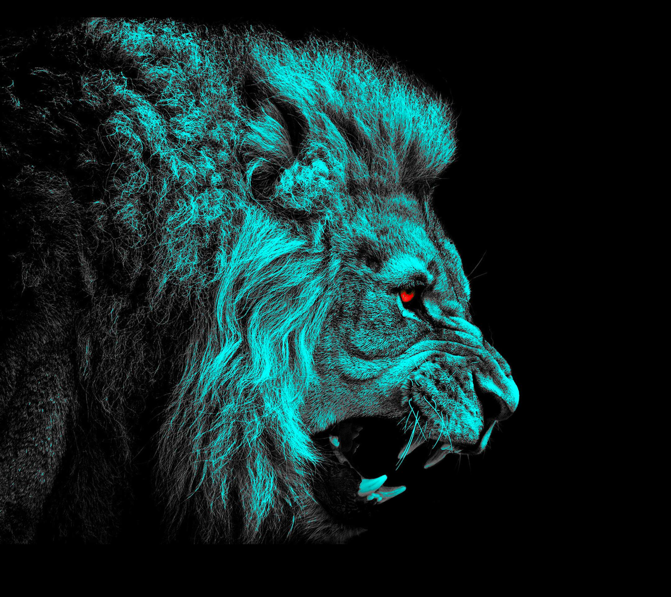 HQ Lion HD wallpapers Wallpapers | File 551.06Kb