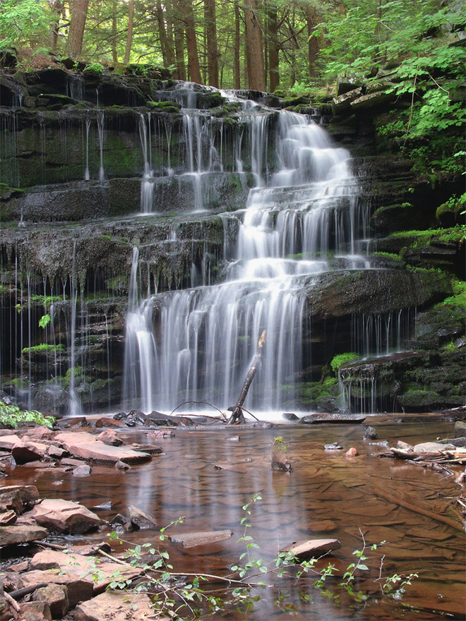660x880 > Loup Of Fintry Waterfall Wallpapers