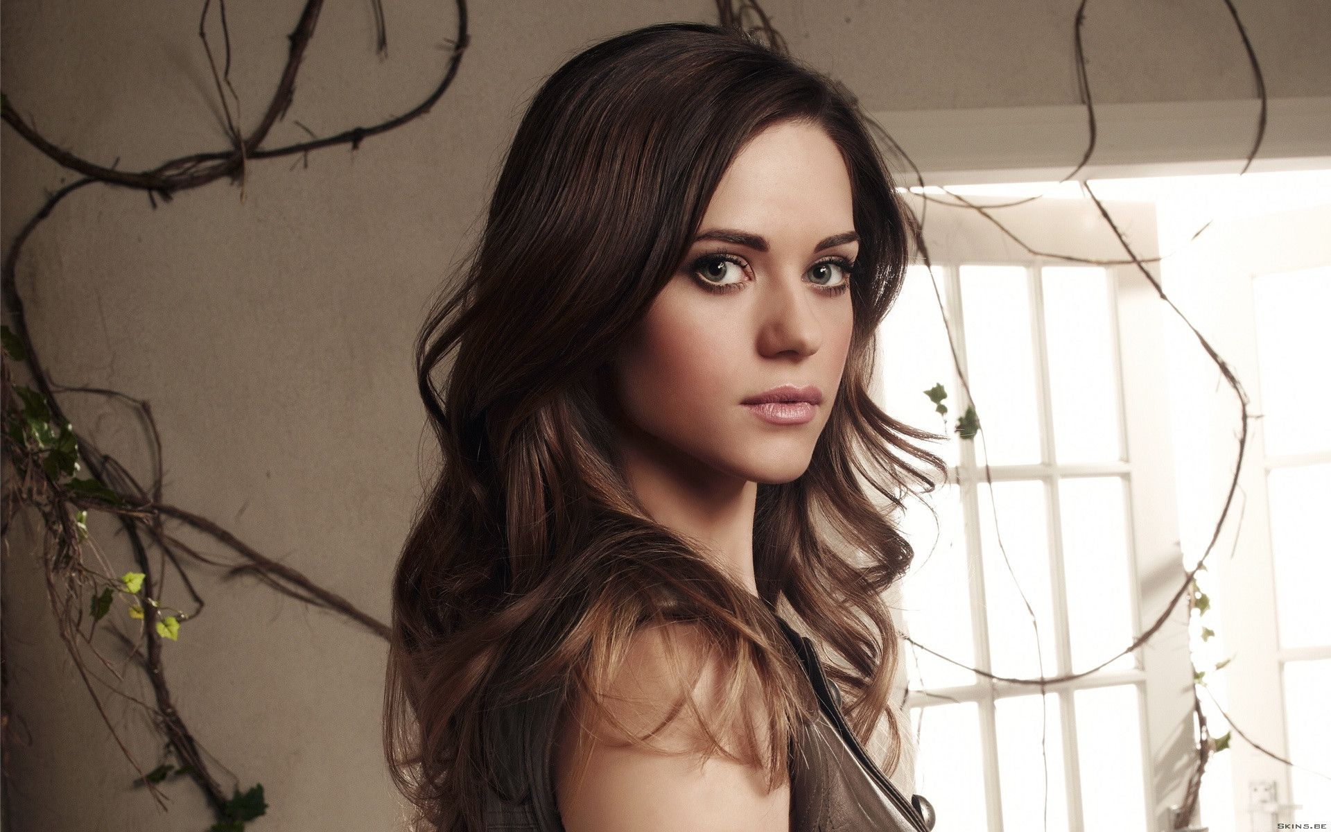 Nice wallpapers Lyndsy Fonseca 1920x1200px