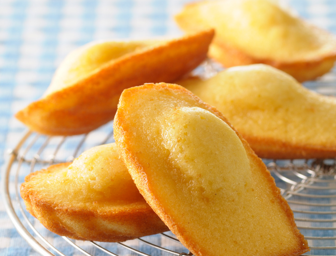 Amazing Madeleine Pictures & Backgrounds