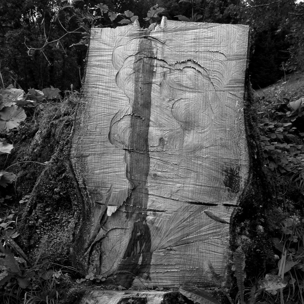 Mandelbrotbaum Pics, Technology Collection