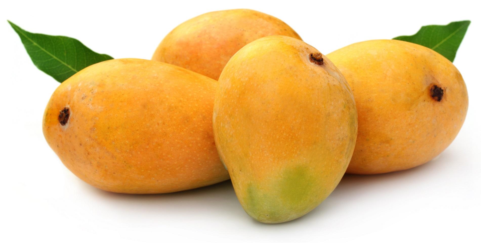 Mango #6