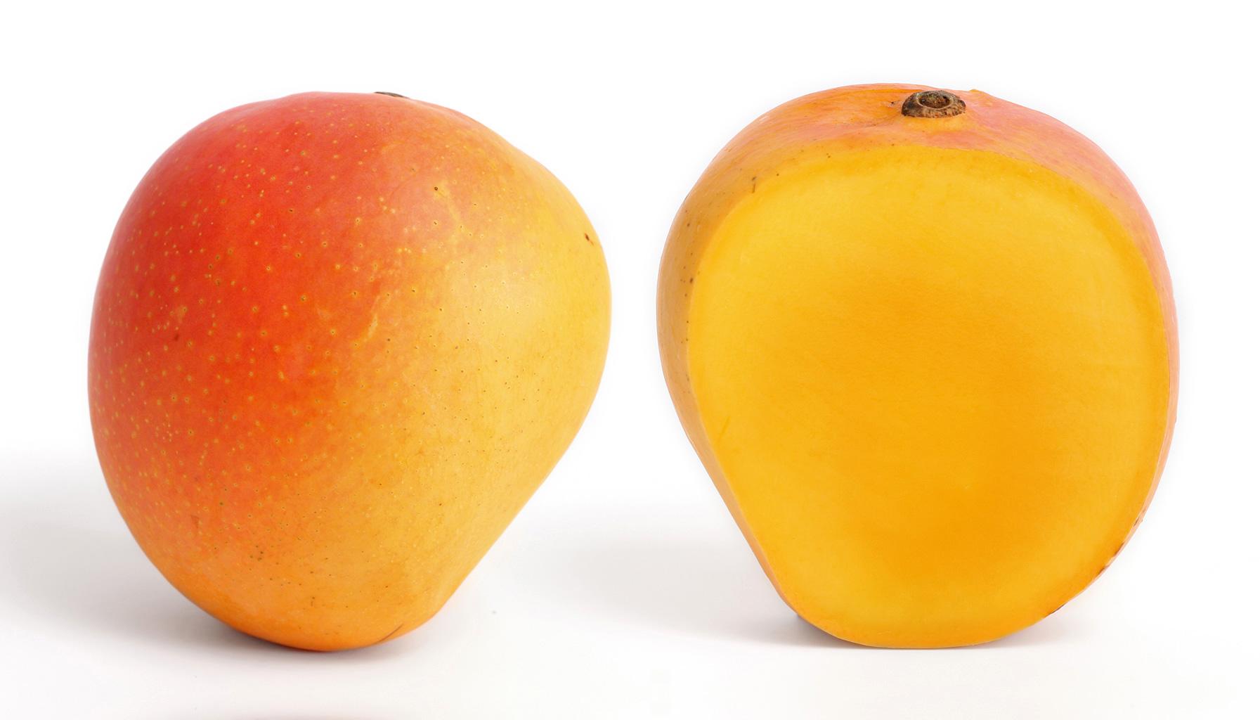 Images of Mango   1793x1024