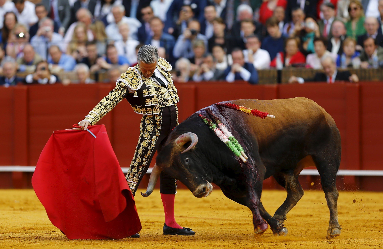 Images of Matador | 3000x1953