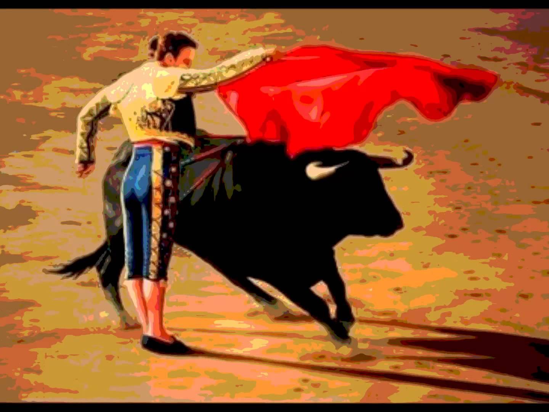 Matador HD wallpapers, Desktop wallpaper - most viewed